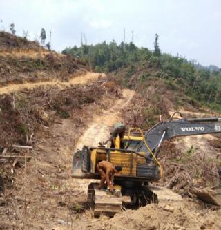 Alat Berat di Hutan Desa Sungai Salak Di Amankan Polhut