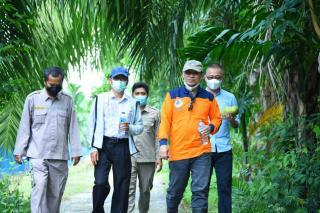 Apresiasi Kelompok Tani, Pemkab Bengkalis Dukung Kembangkan Pinang Lonjong