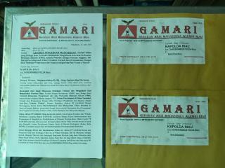 Dukung Arahan Presiden dan Bapak Kapolri,Aktivis GAMARI Minta Kapolda Riau Tangkap Preman Penghina T