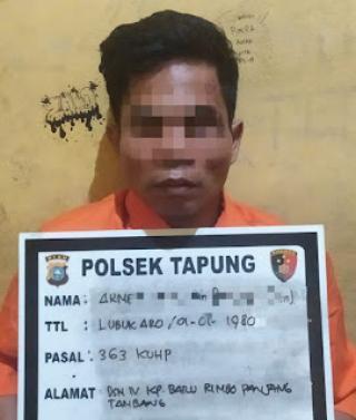 Bawa Kabur Truk Bermuatan Sawit Lalu Terguling, Satu Pelaku Tertangkap Karena Kejepit Truk