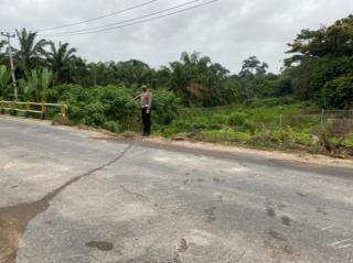 Malang Nasip Sopir Fuso Digilas Mobilnya Sendiri